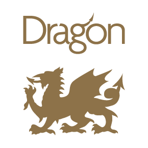 dragon_logo-01
